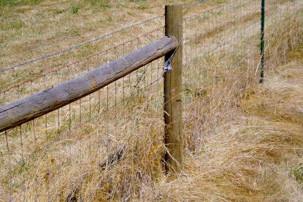 Non-climb farm fence with wall posts