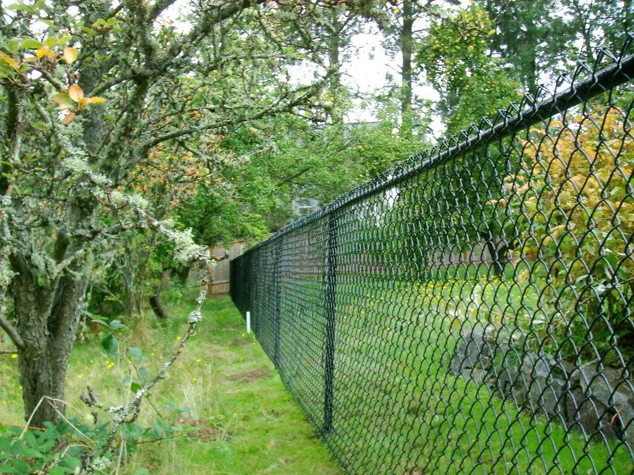 Chain link fence - Superior Fence